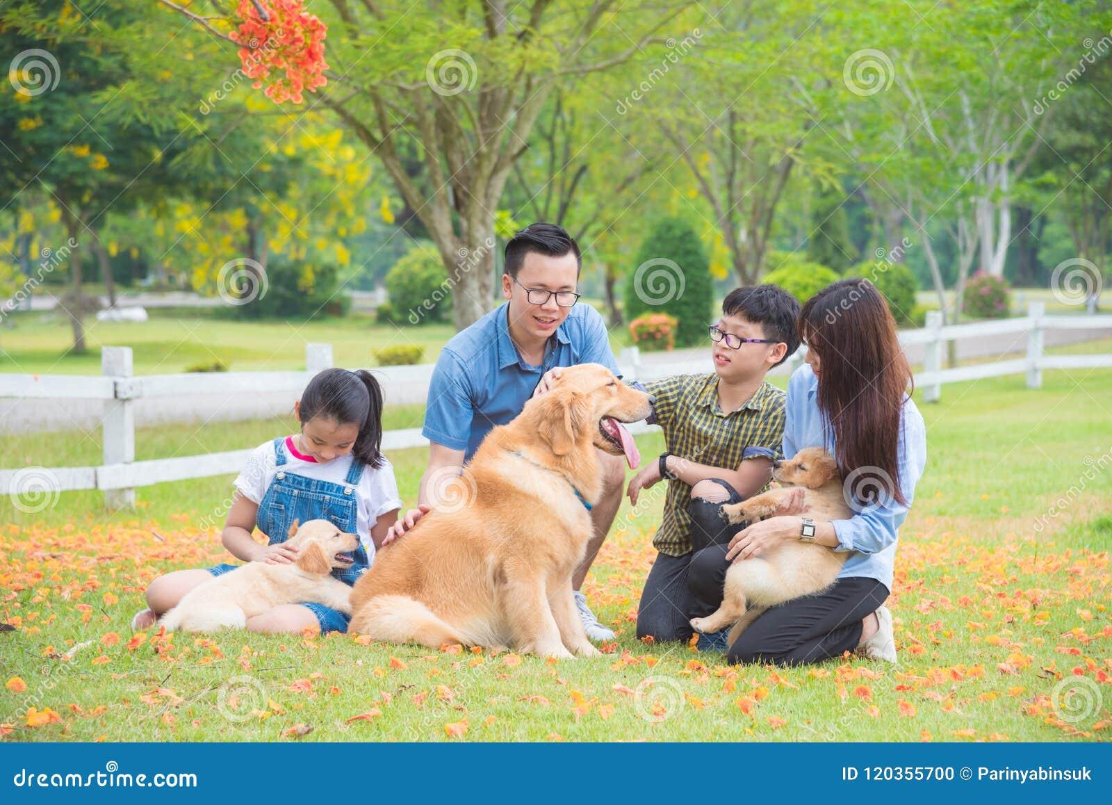 Família com os cães que sentam-se no parque