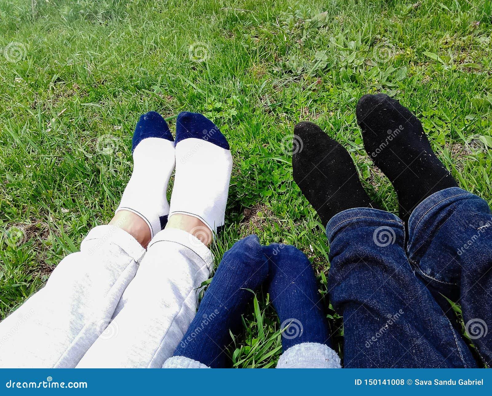 Família feliz que encontra-se no campo de grama no parque