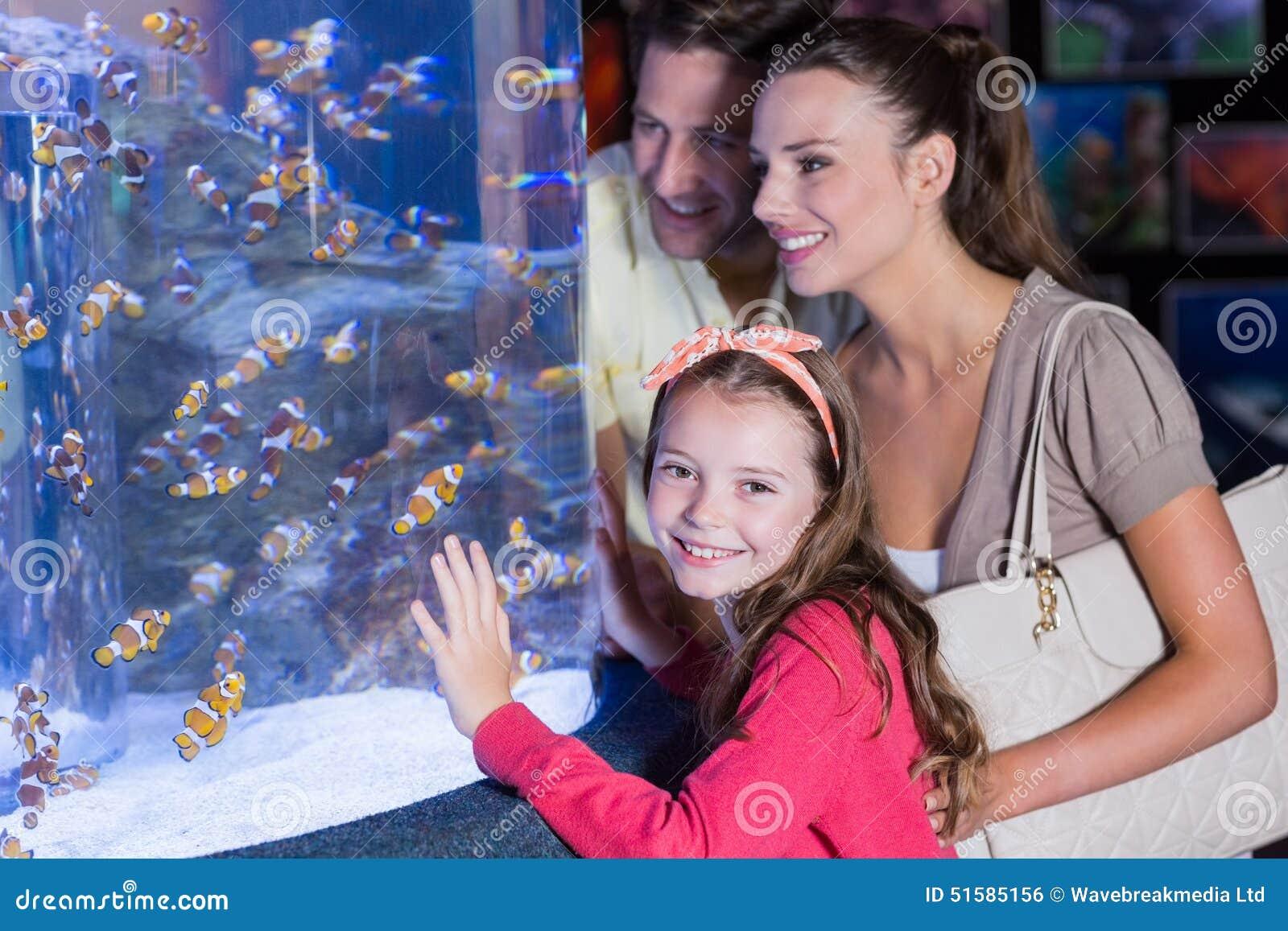 Família feliz que olha o aquário