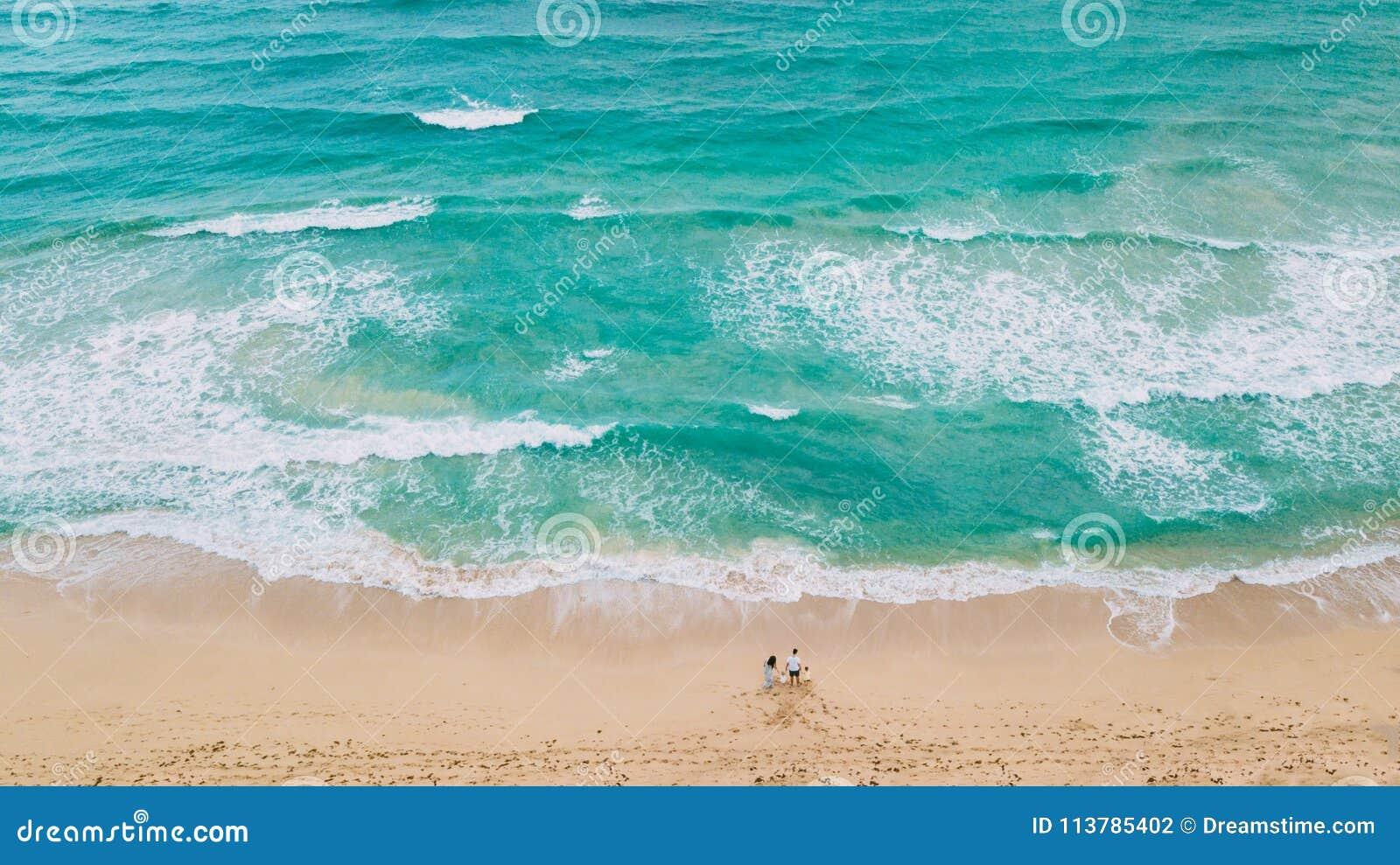 Família na praia Apenas areia e oceano