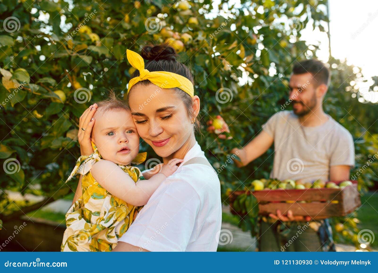 A família nova feliz durante maçãs da colheita em um jardim fora