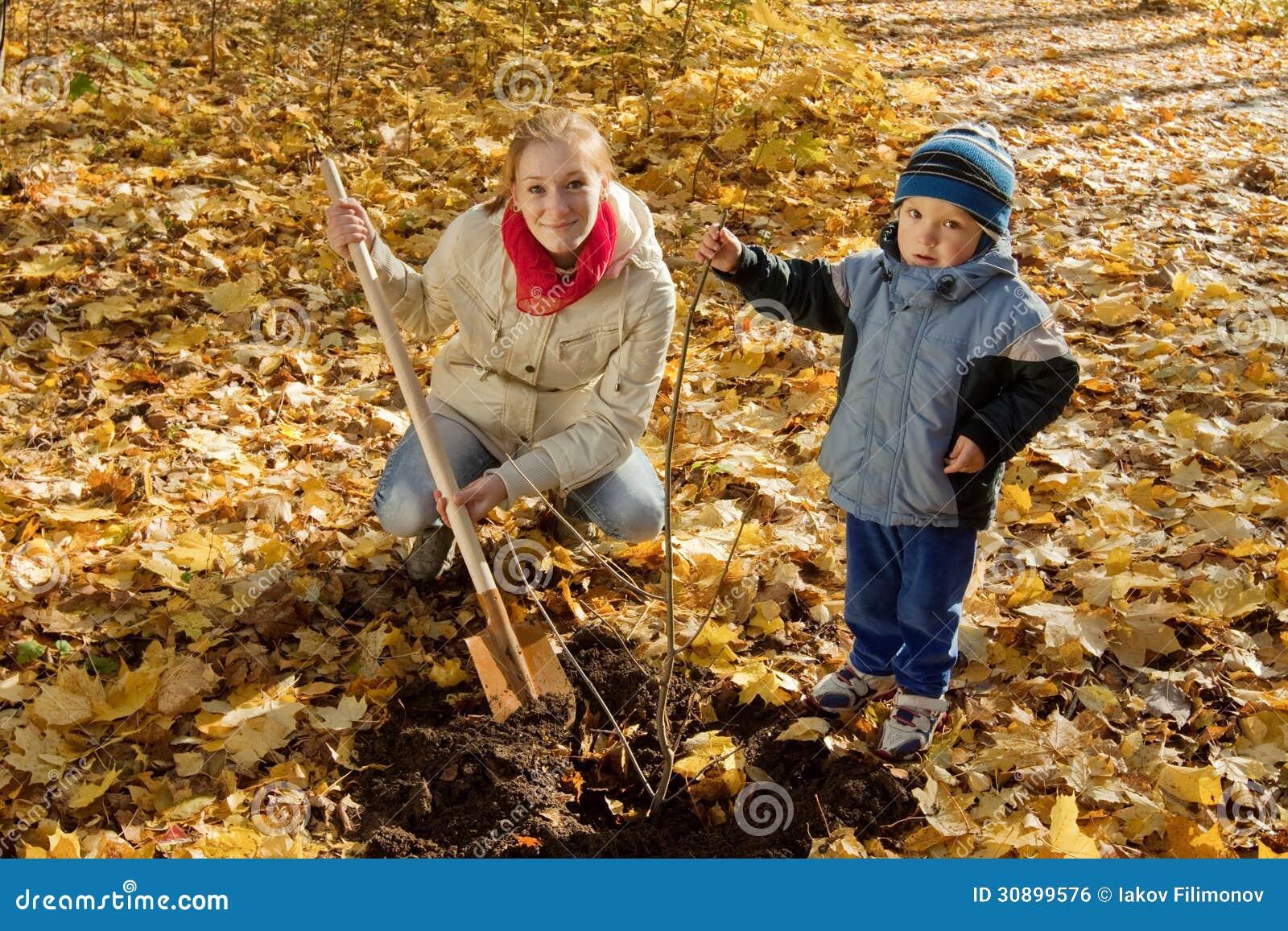 Famiglia che pianta albero in autunno