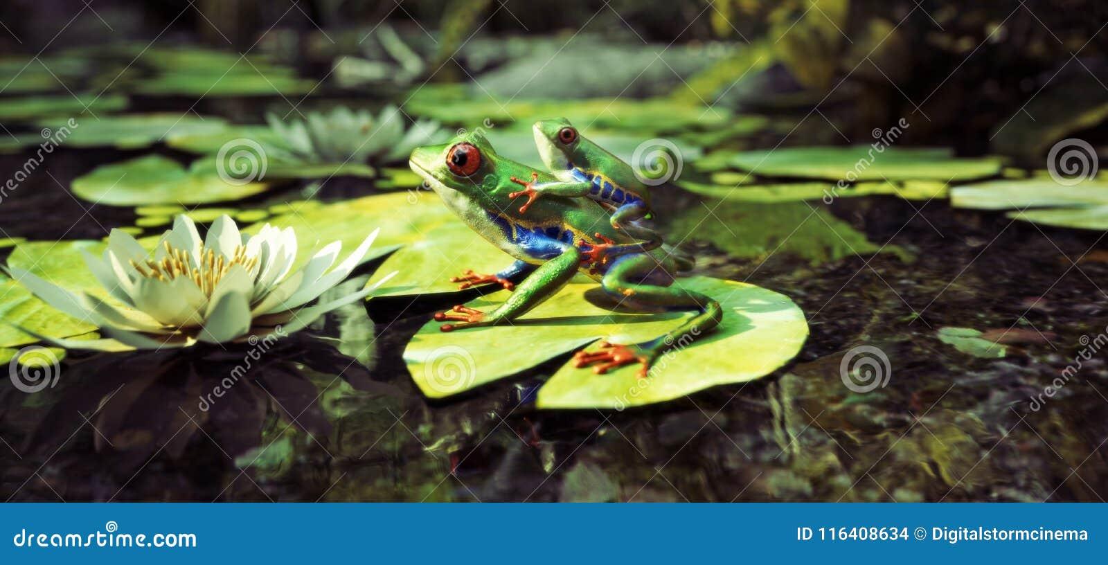 Familia de la rana que se sienta en un cojín de lirio con la parte posterior del bebé encendido Dirección, protección, seguridad,