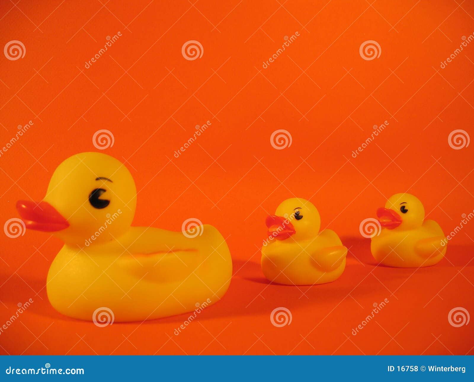 Familia Ducky de goma I