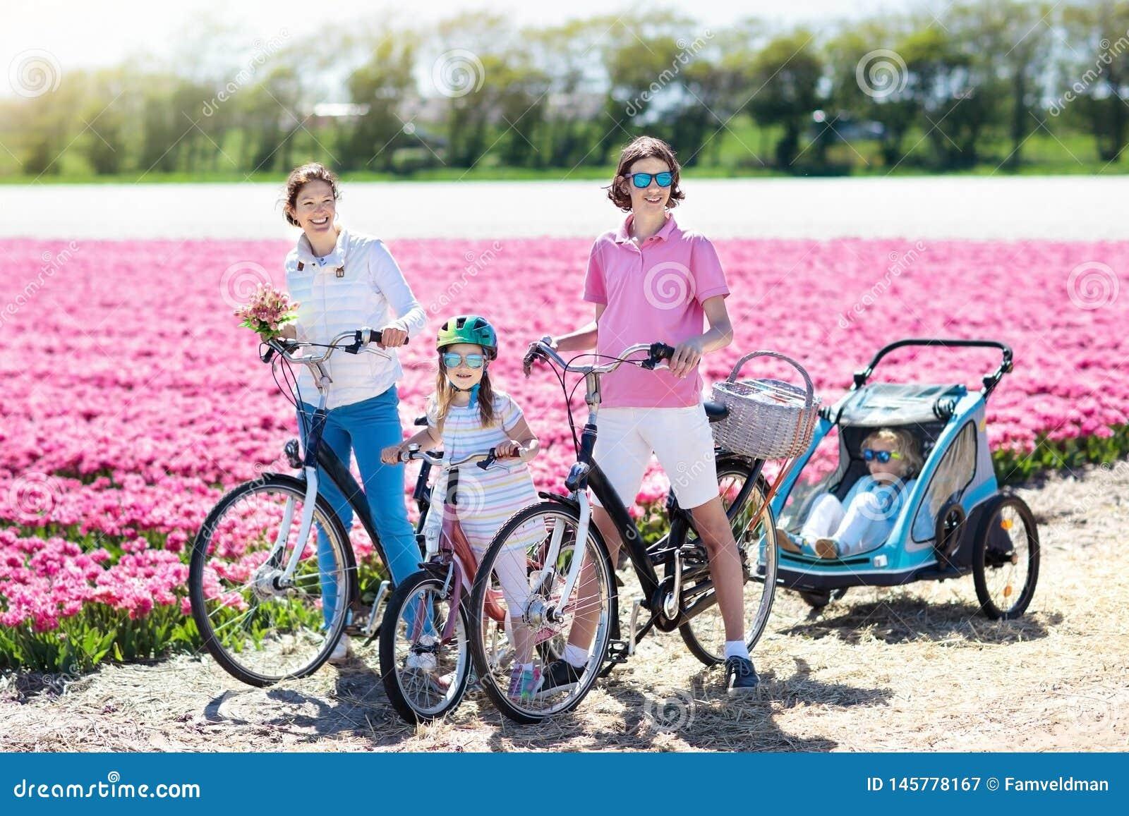 Familia en la bici en campos de flor del tulip?n, Holanda