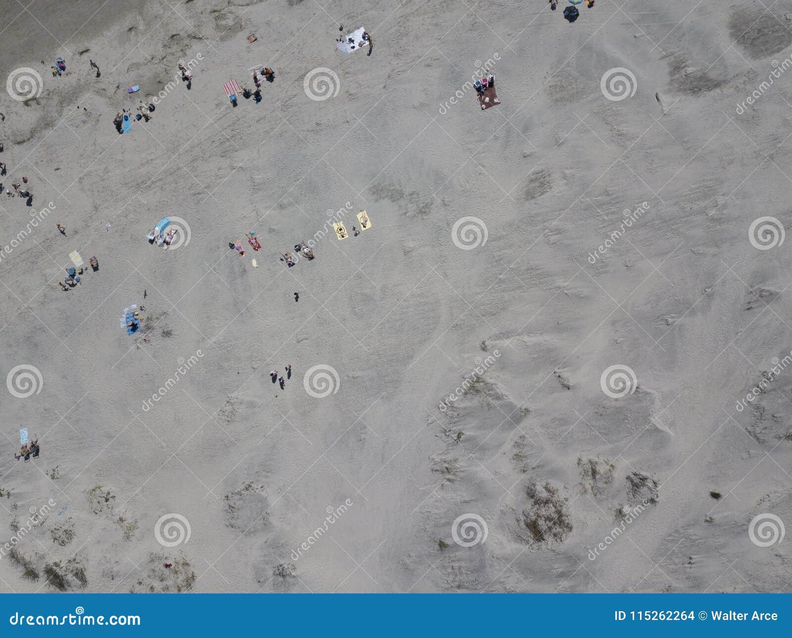 Familias que disfrutan de un día en la playa