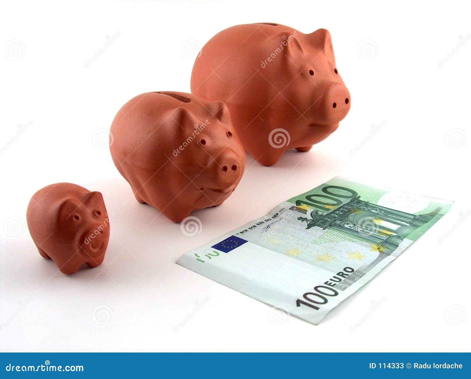 Familie der Schweingeldkästen