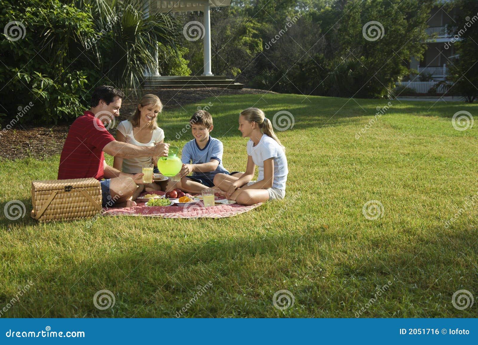 Familie die picknick in park heeft.