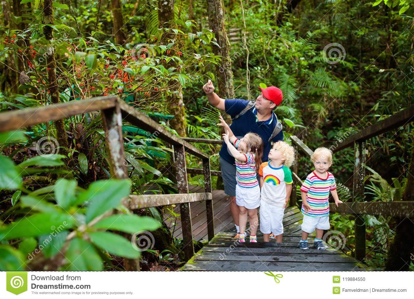 Familie die in wildernis wandelen