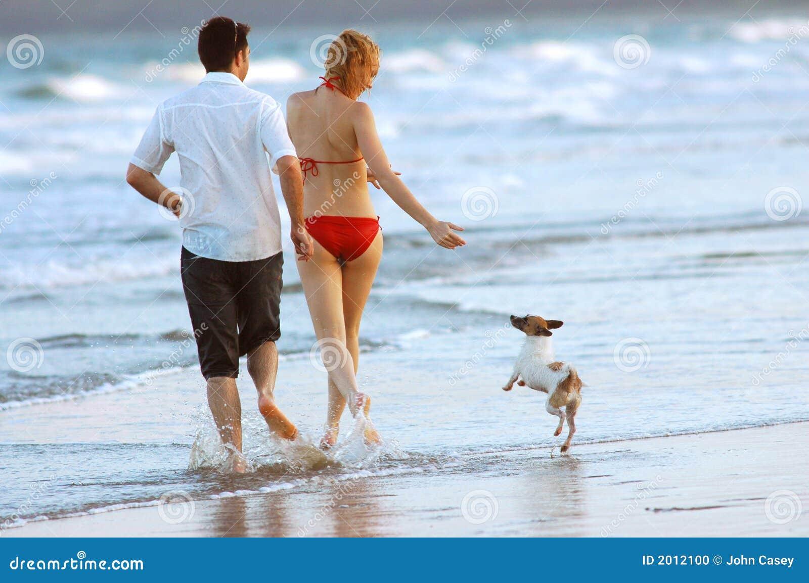 Familie met hond bij het strand