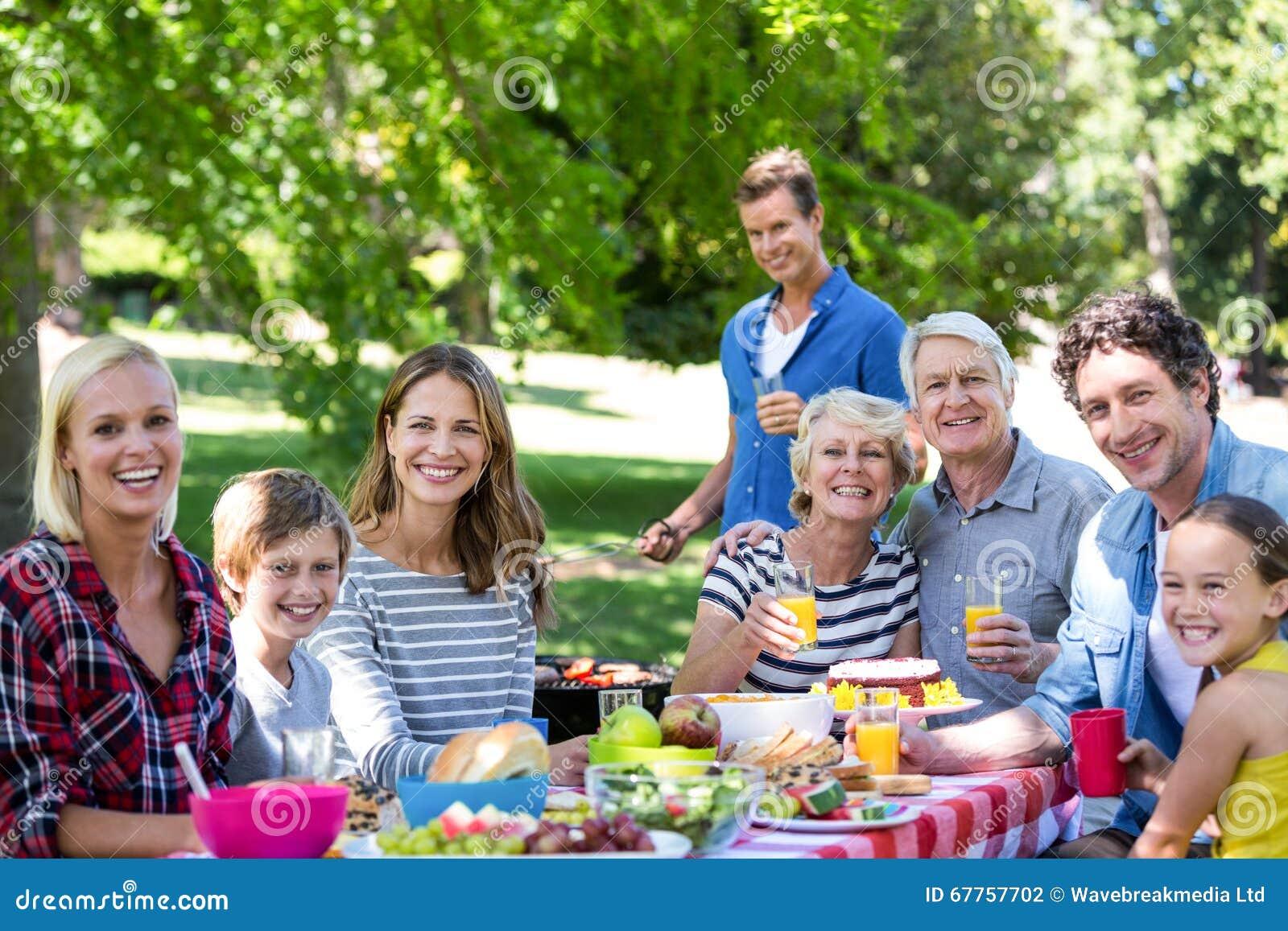 familie und freunde die ein picknick mit grill haben. Black Bedroom Furniture Sets. Home Design Ideas