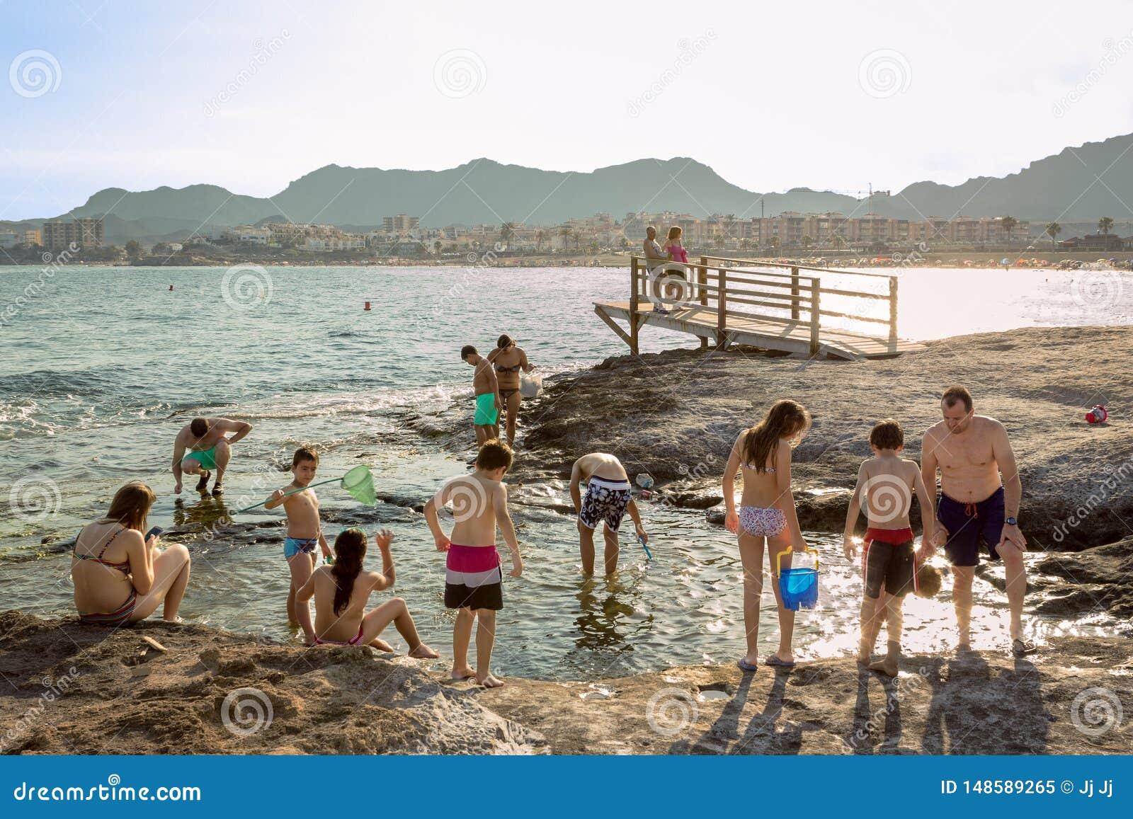 Familien, die Spaß auf dem Strand haben