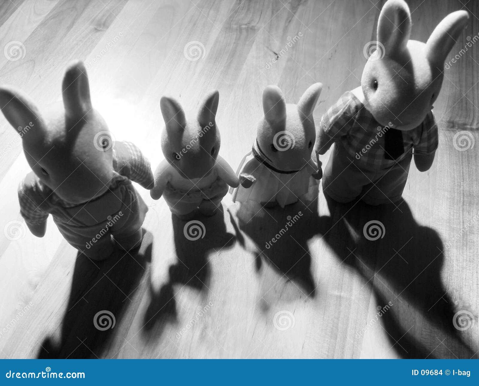 Famille de lapin