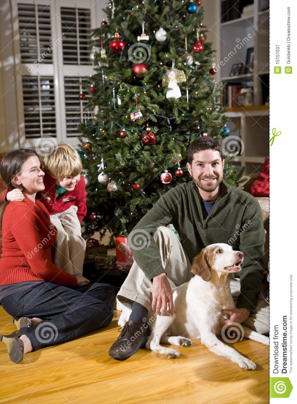 Family With Boy And Dog By Christmas Tree Stock Image