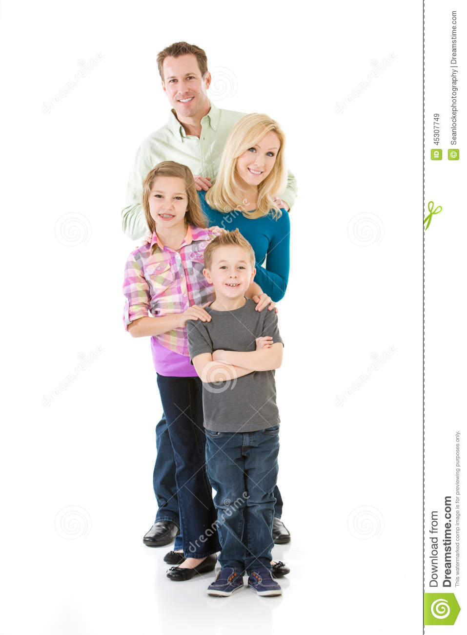 traditional nuclear family Traditional nuclear family households are now less common compared to household with couples without children, single-parent families, and unmarried couples with children.