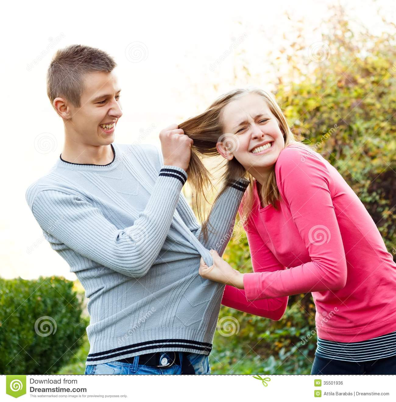 family fight stock photo image of pain hair pull disagreeing 35501936. Black Bedroom Furniture Sets. Home Design Ideas