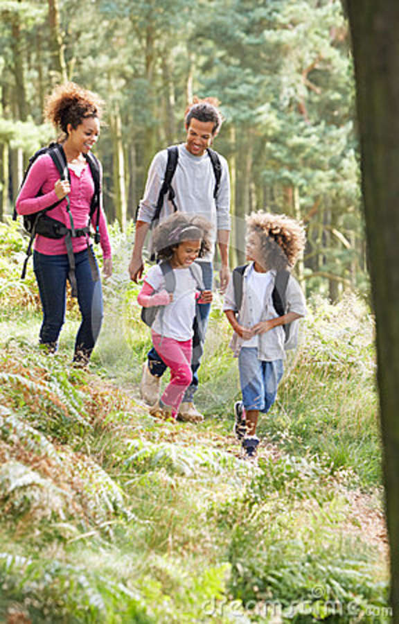 Family Group Hiking In Woods Together Royalty Free Stock ...