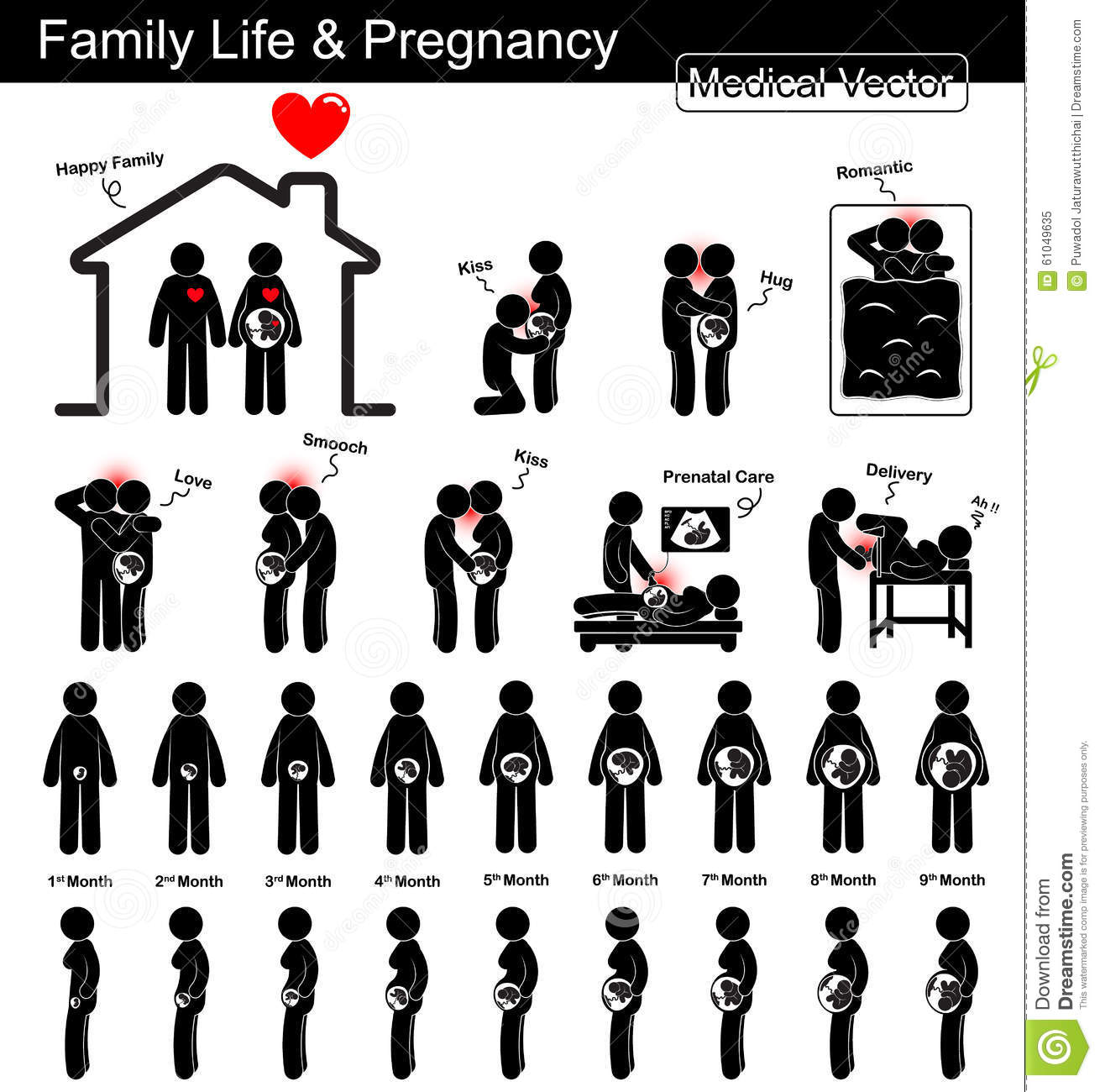 family life during pregnancy and fetal development   pregnant woman and fetal growth in uterus
