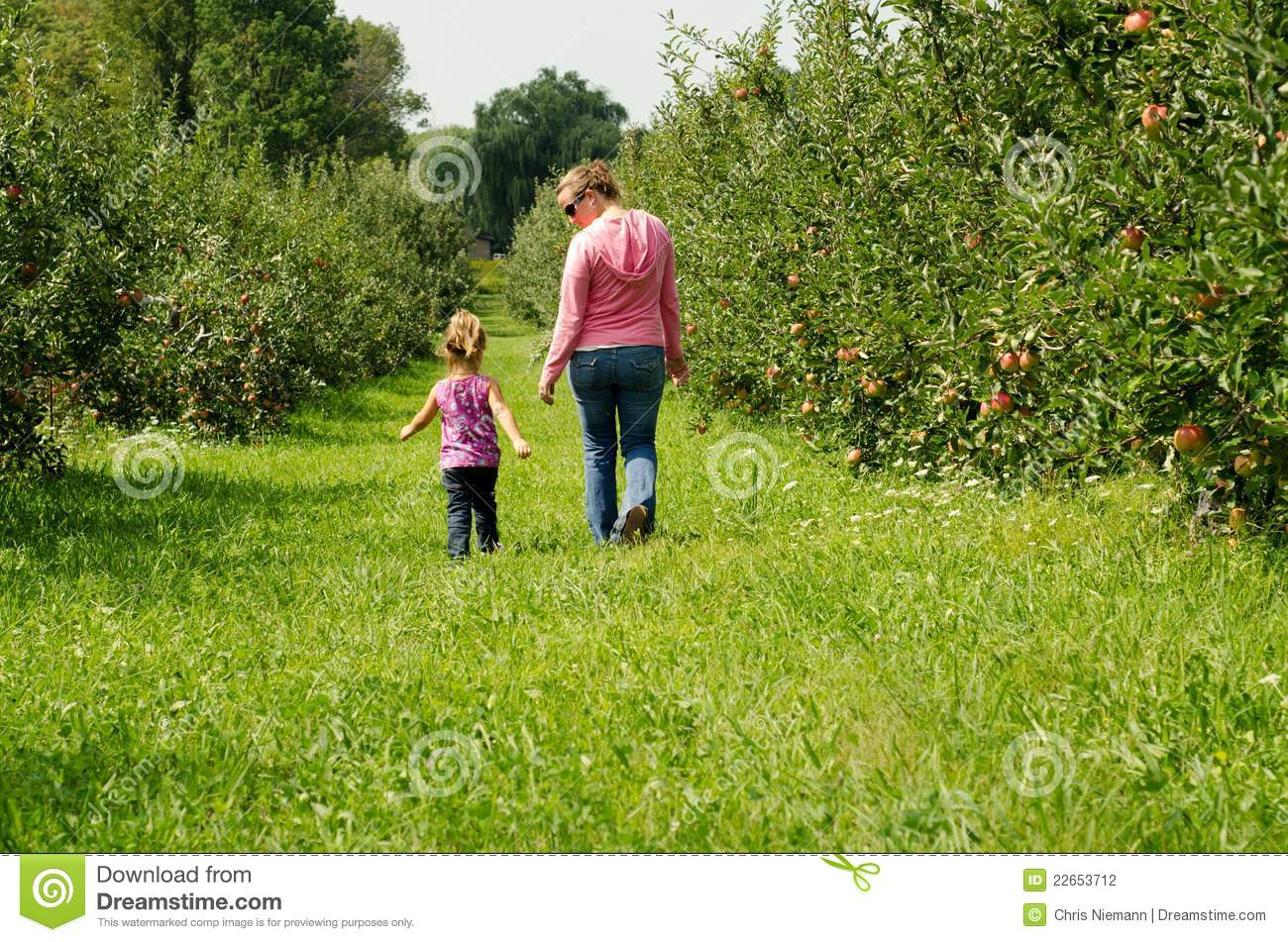 Family In An Orchard Stock Photography  Image 22653712. Enviromental Science Degree Sonic Price Menu. Class 7 Truck For Sale New Crossover Vehicles. East Valley Clinic West Covina. Princeton Sat Review Classes. National Gallery Of Canada Collection. How To Set Up Domain Name Moving Truck Price. Cable Tv Of East Alabama The Apartment Movers. Katherine Heigl Movies List Best Laptop Ever