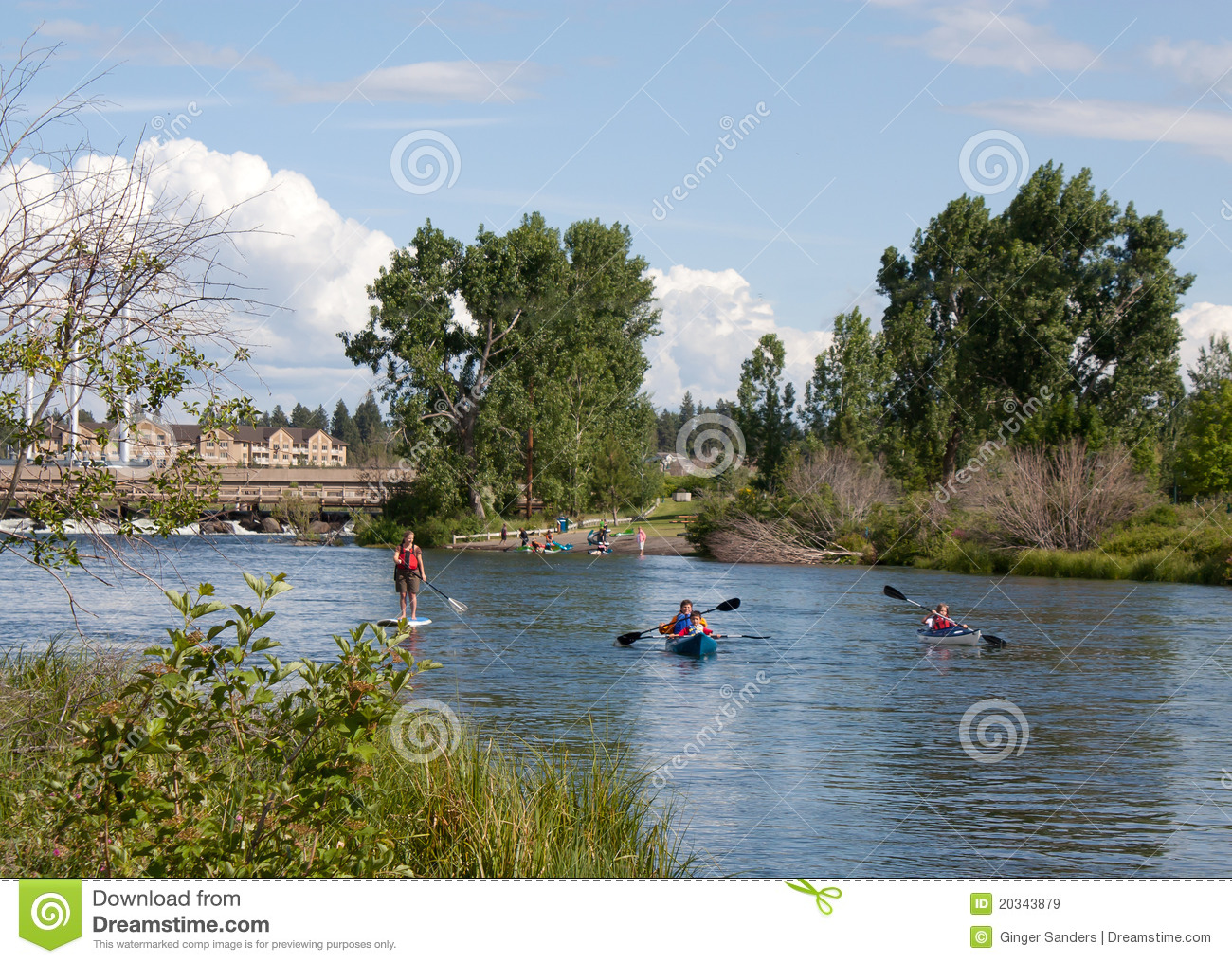 Family Paddle Boarding And Canoeing In River