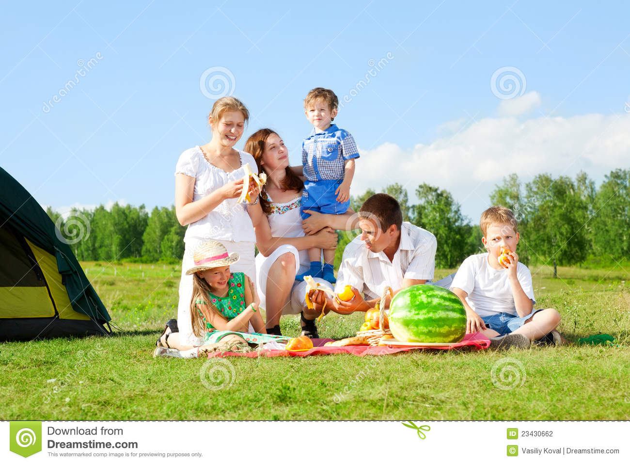 Family Picnic Stock Photography - Image: 23430662