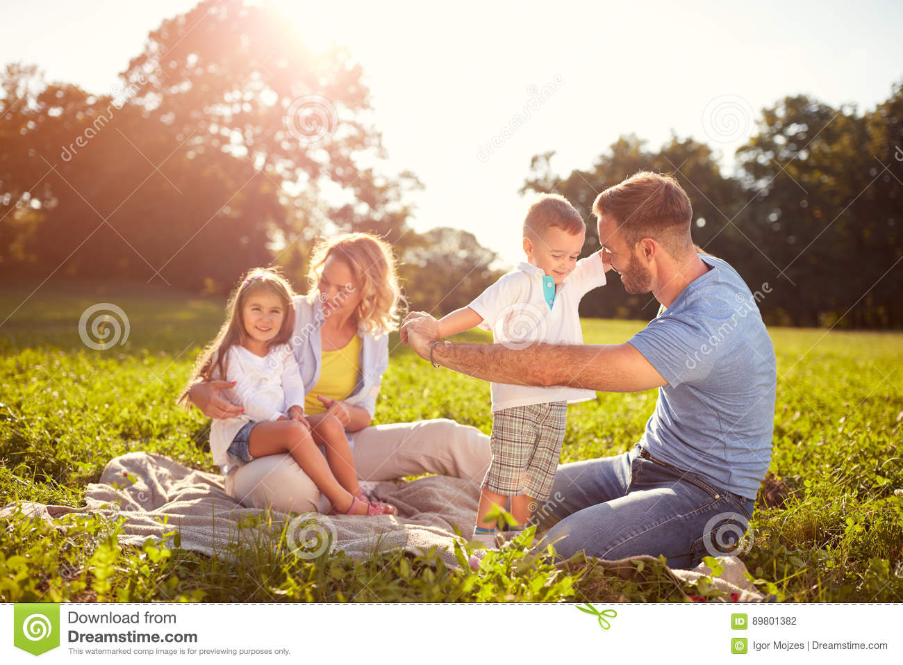 Download Family on picnic in park stock photo. Image of leisure - 89801382