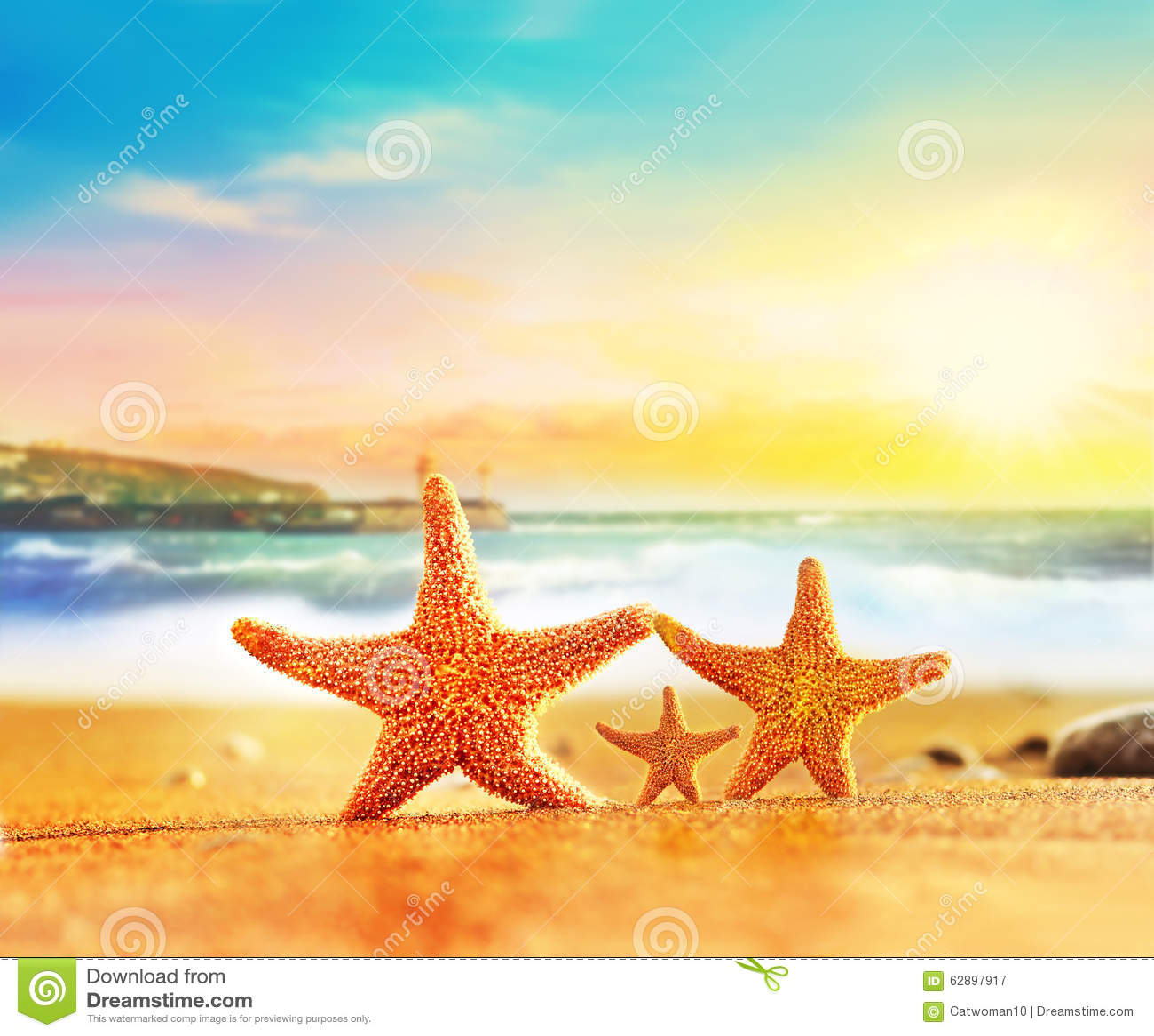 Family starfish on yellow sand near the sea