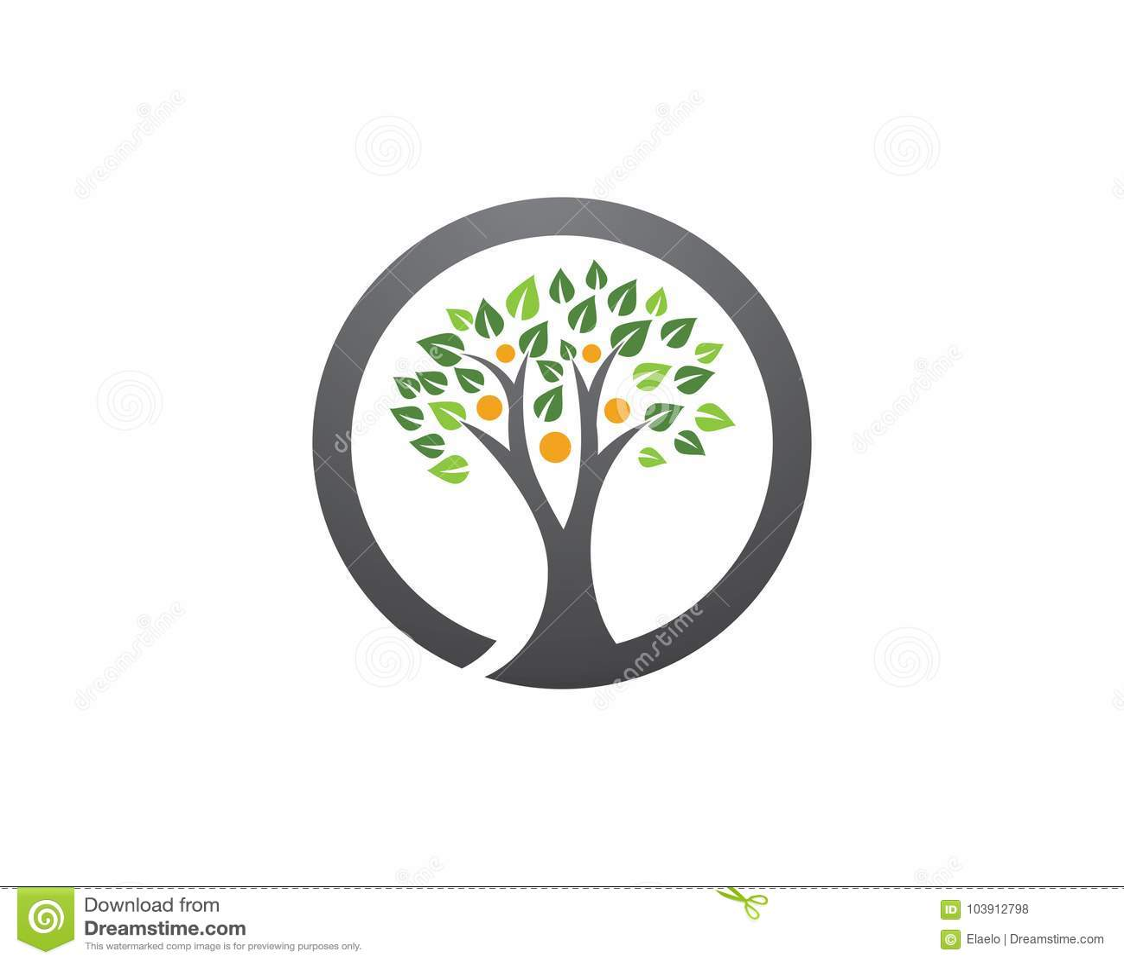 Family Tree Symbol Icon Logo Stock Vector Illustration Of