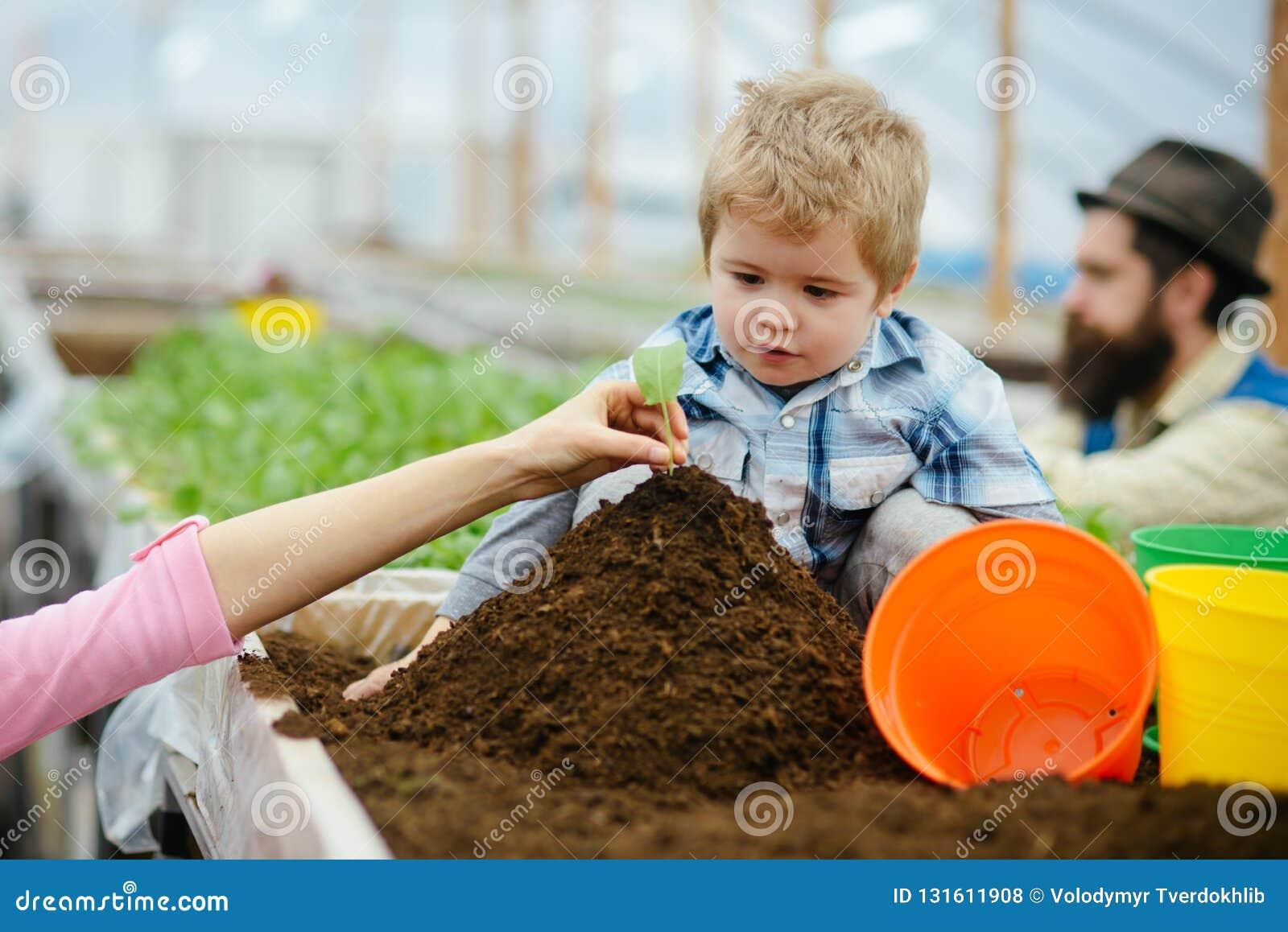 Family values. family in greenhouse. happy family values. family values concept. values and trust.