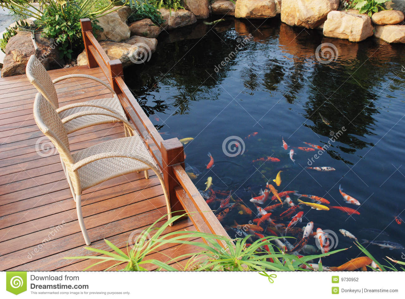 Family Villa Garden Fish Pond Stock Photography Image 9730952
