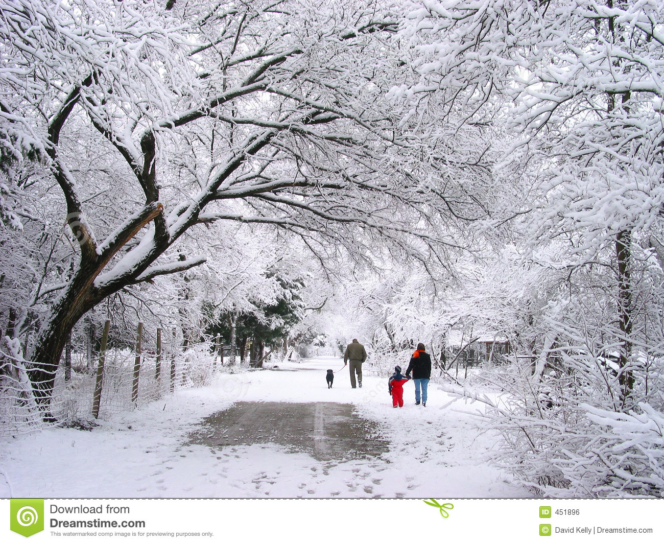 walking in the snow - photo #35