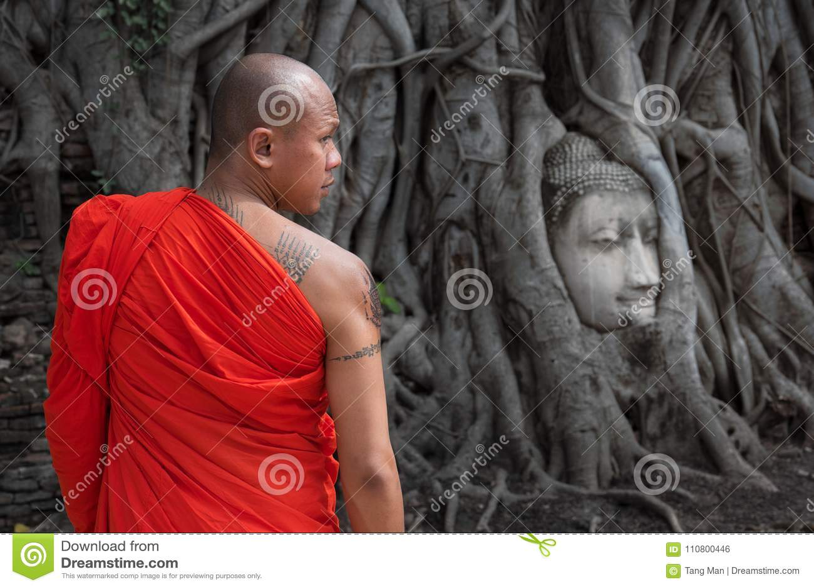 The famous Buddha head at Wat Mahathat in Ayutthaya Historical Park, Thailand.