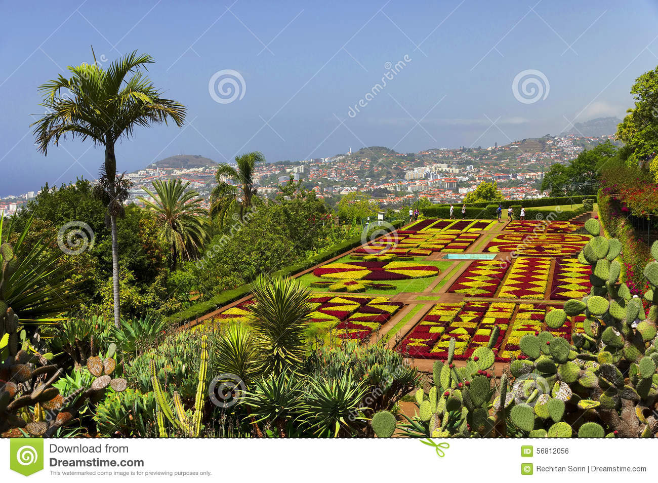 Famous Tropical Botanical Gardens In Funchal Stock Photo