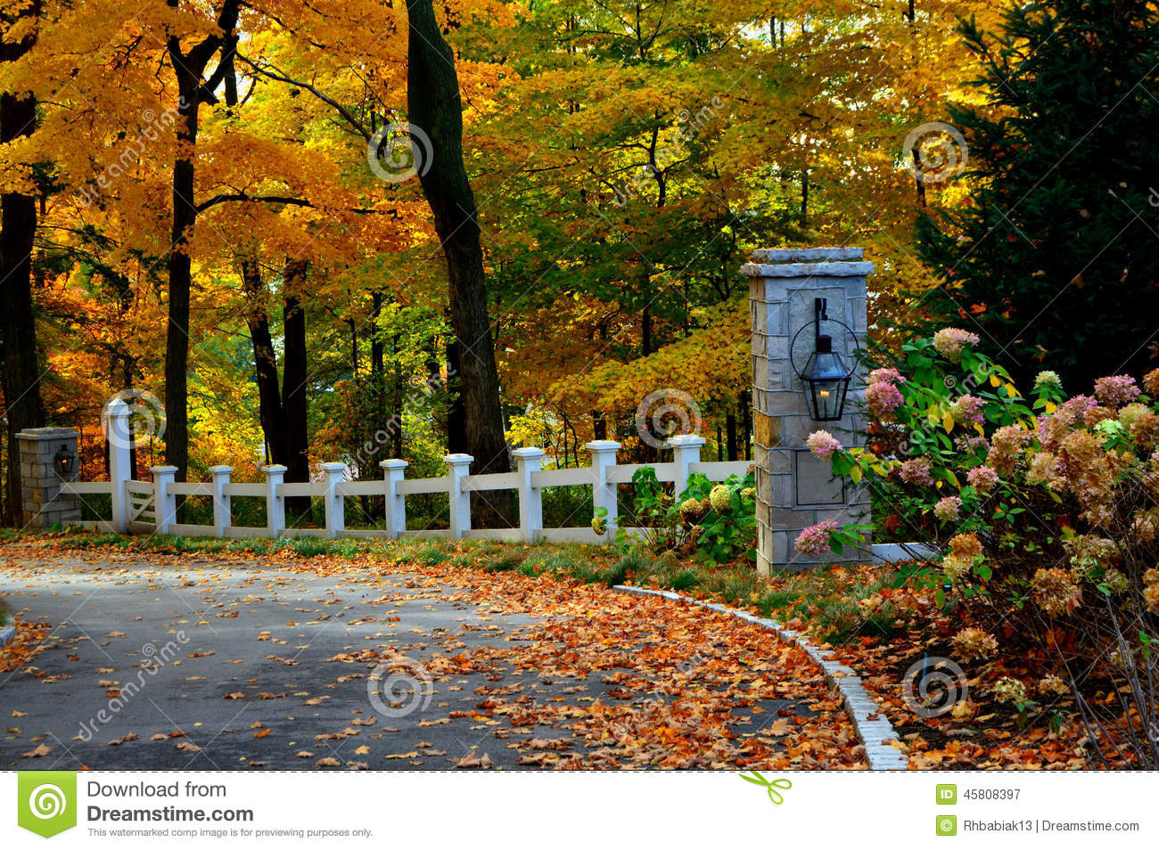 Fall Driveway Stock Image Image Of Colorful Lake Autumn