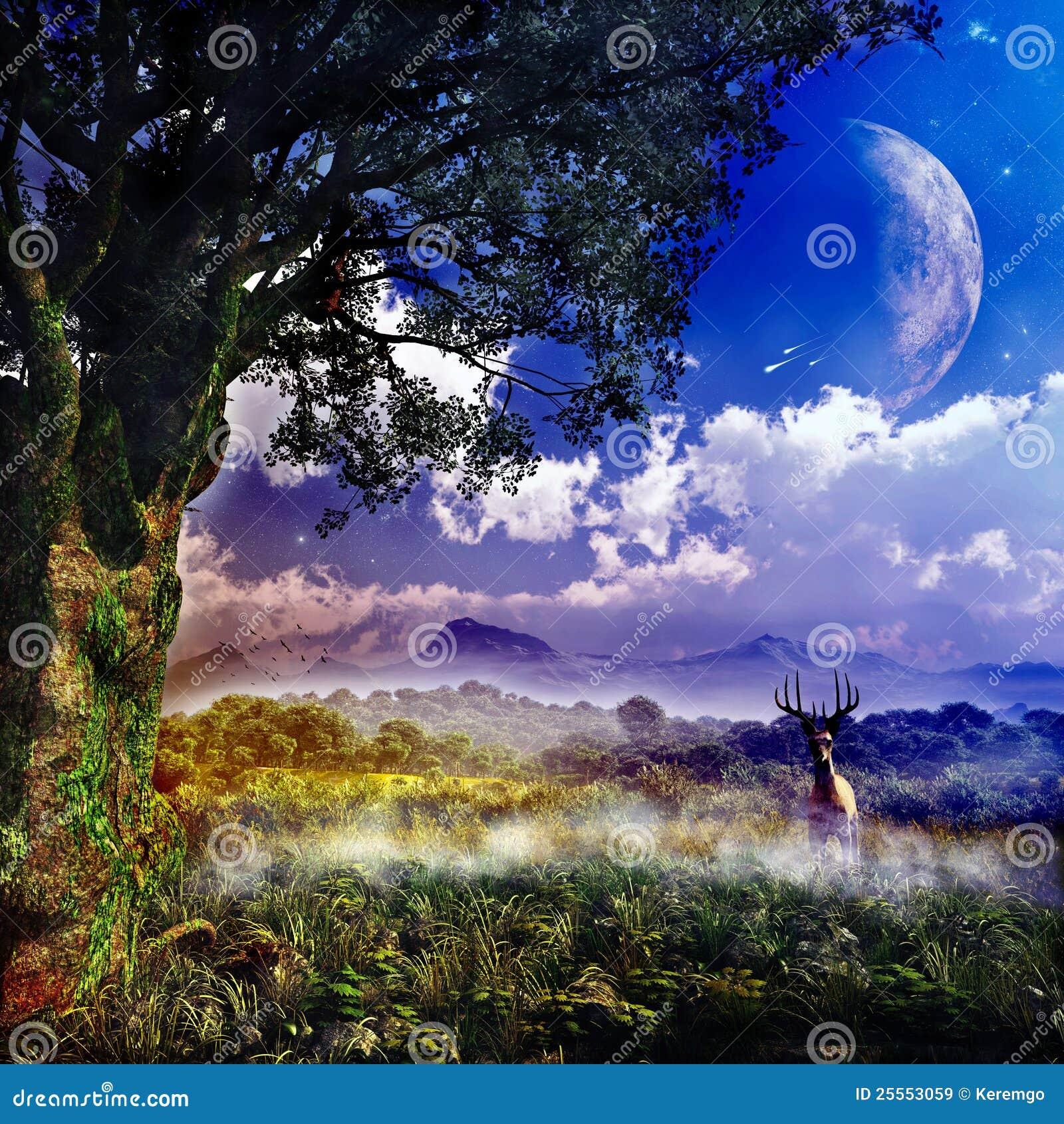 Fantasie landcape royalty vrije stock afbeeldingen afbeelding 25553059 - Afbeelding in ...