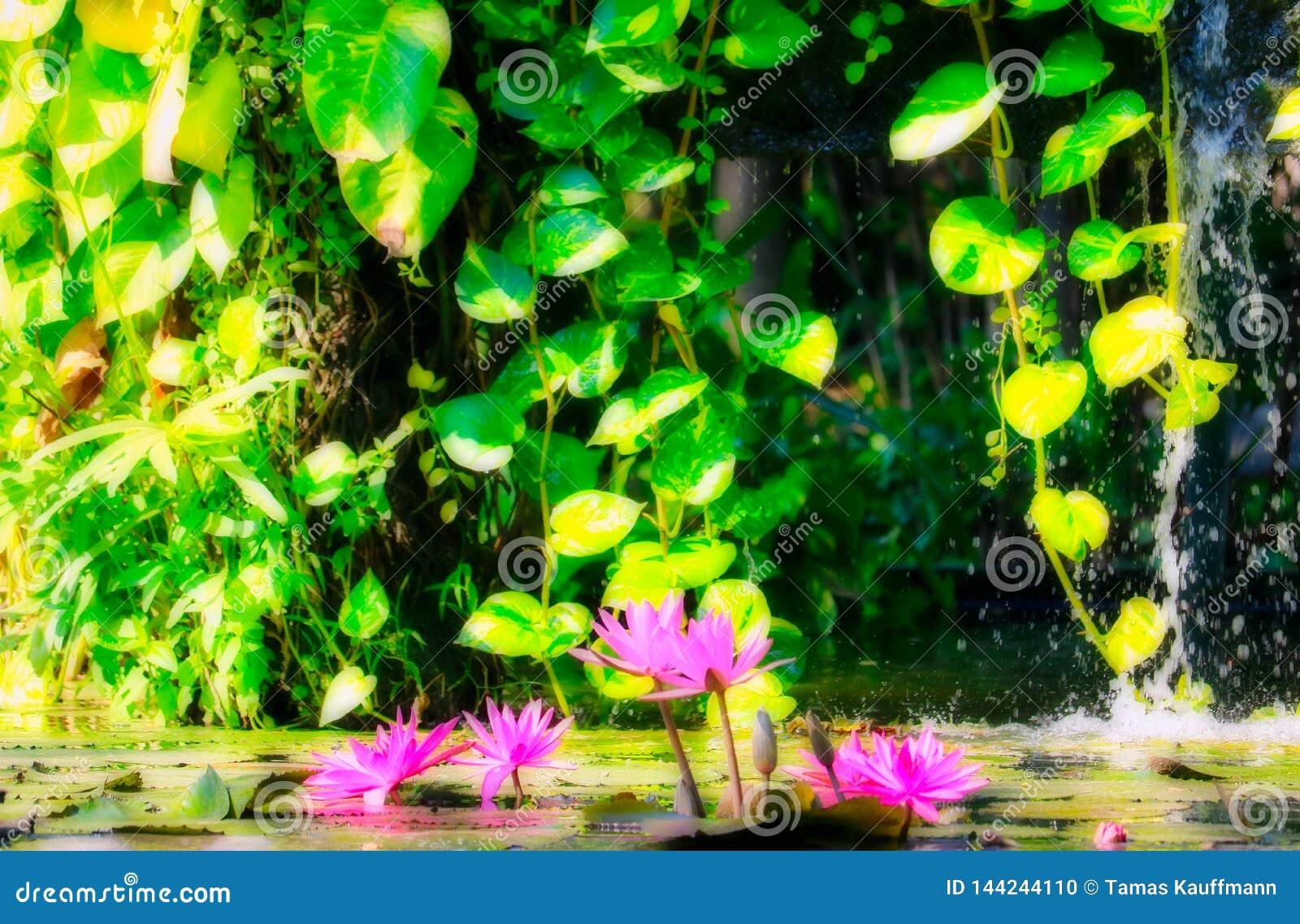 Fantasienaturbrunnen mit Seerose
