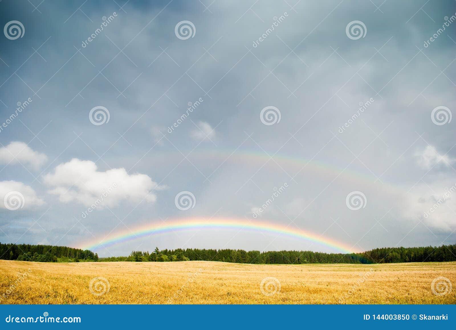 Fantasilandskapbakgrund Regnbågelandskap på färgrik bakgrund