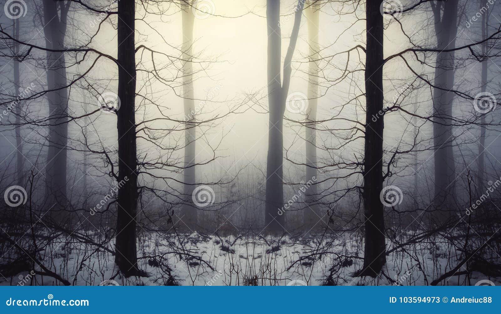 Fantasiskog med snö och dimma på soluppgång
