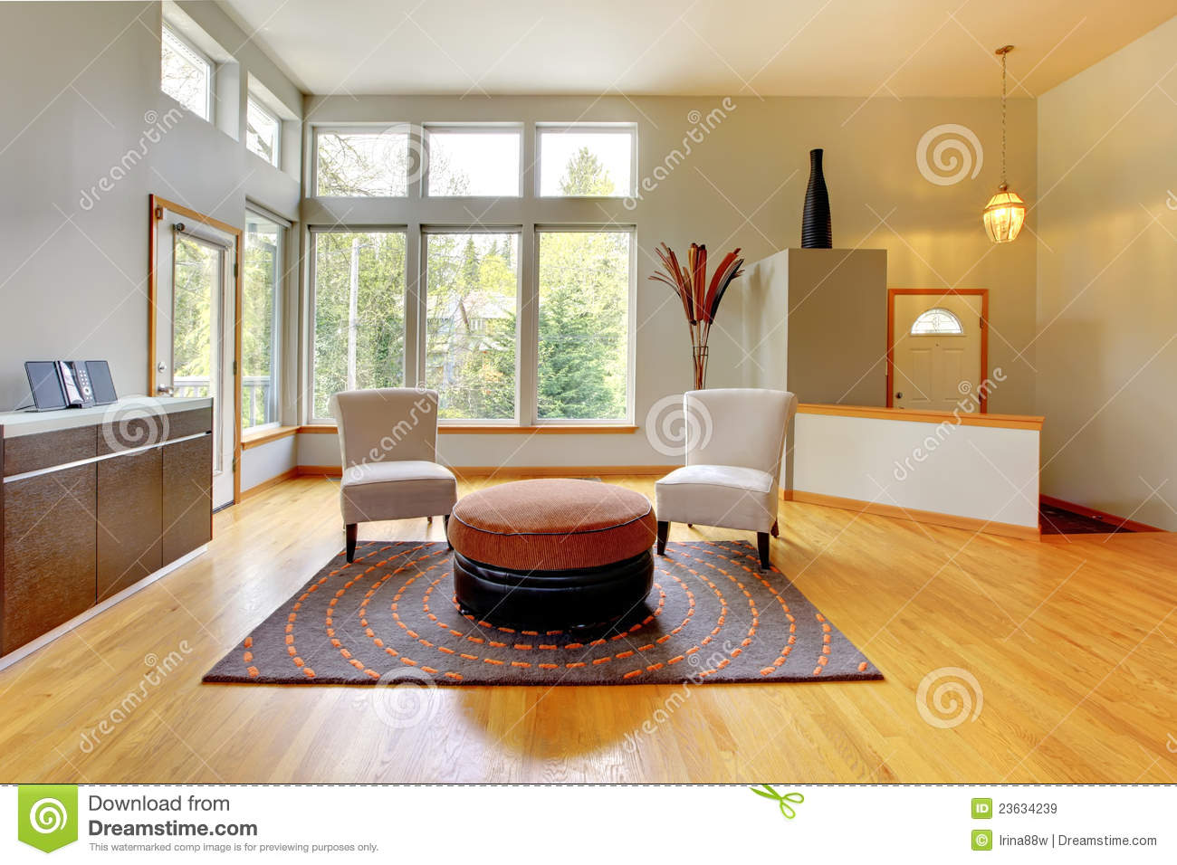 Download Fantastic Modern Living Room Home Interior. Stock Image - Image of estate, design: 23634239