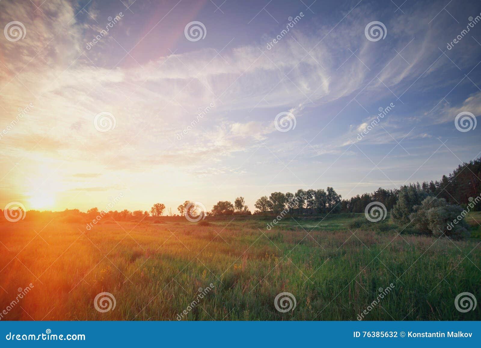 Fantastische dag met verse bloeiende heuvels in warm zonlicht Dramatische en schilderachtige ochtendscène Plaatsplaats: Europa