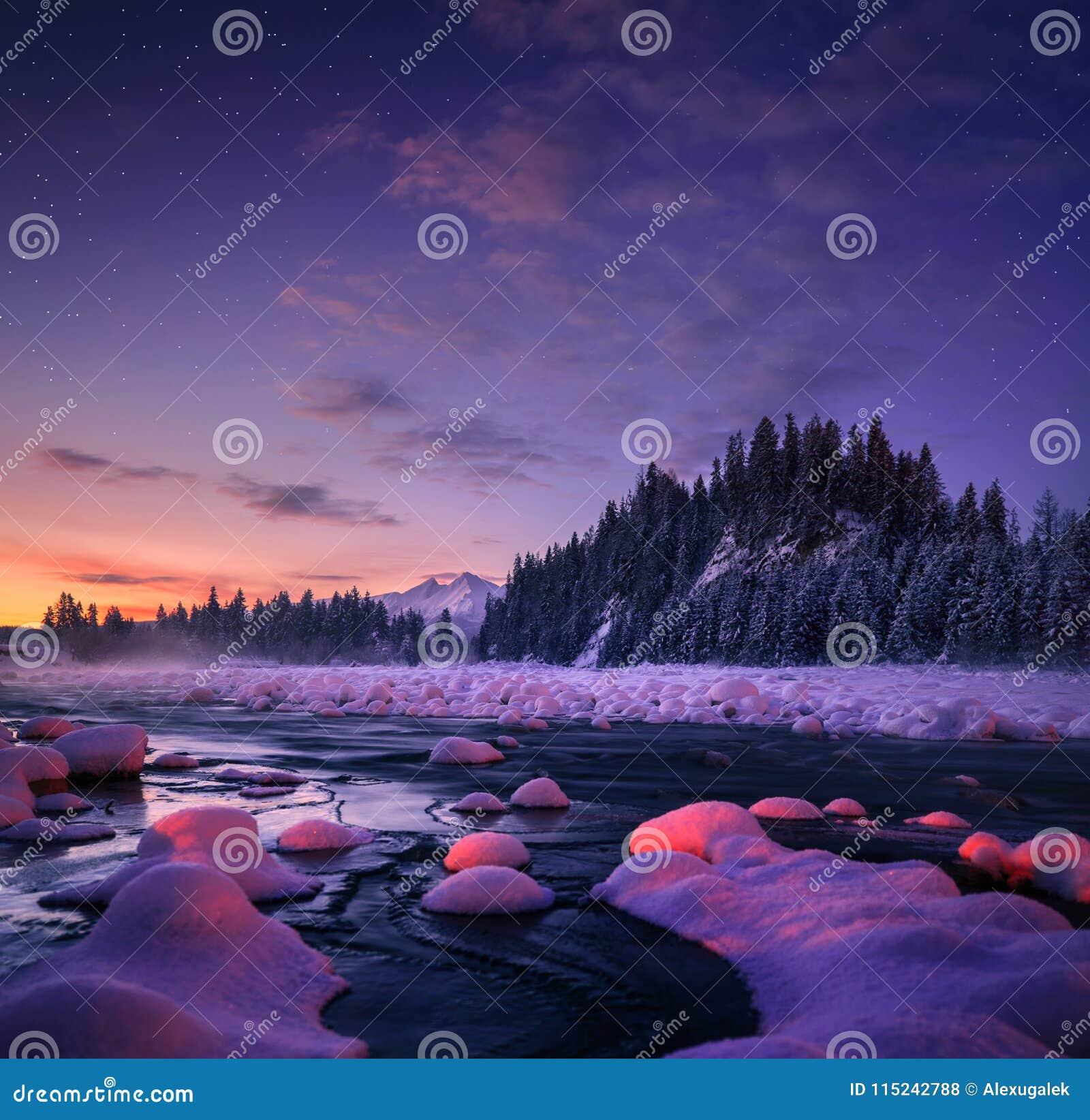 Fantastiskt nattlandskap härlig gjord naturvektor för bakgrund