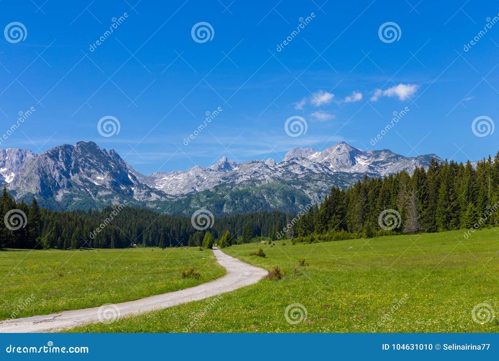 Fantastyczny pasmo górskie Miejsce sławny miejsca Durmitor park narodowy, Bałkany Wioska Zabljak, Montenegro, Europa