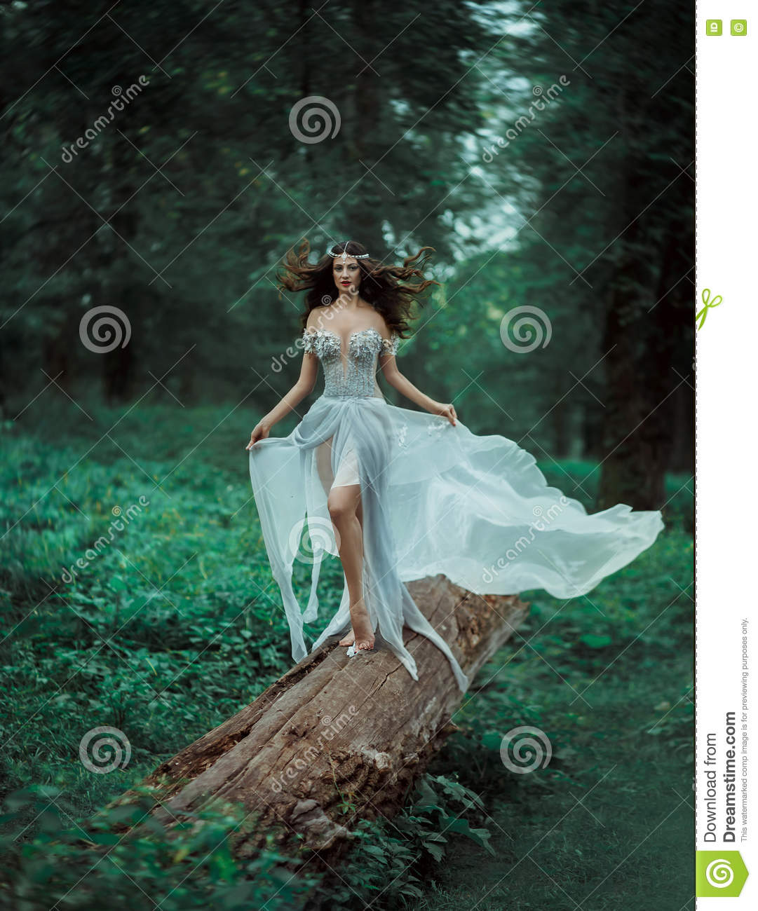 The fantasy forest fairy. stock image. Image of fantastic ...