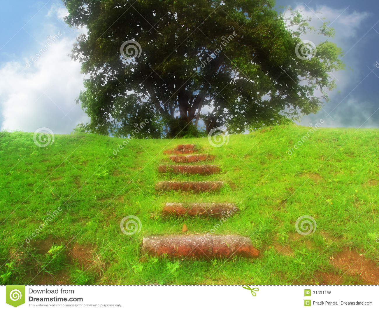 Fantasy green landscape and steps stock photo image of for Soft landscape materials