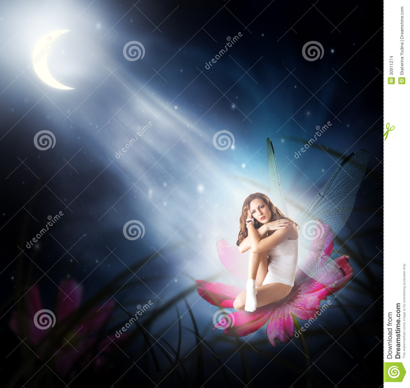 fairy tale moon stock images download 187 photos
