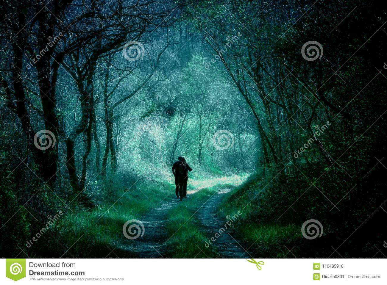 Silhouettes Walking On A Forest Path Dark Fantasy Landscape Mystic Wallpaper Book Cover