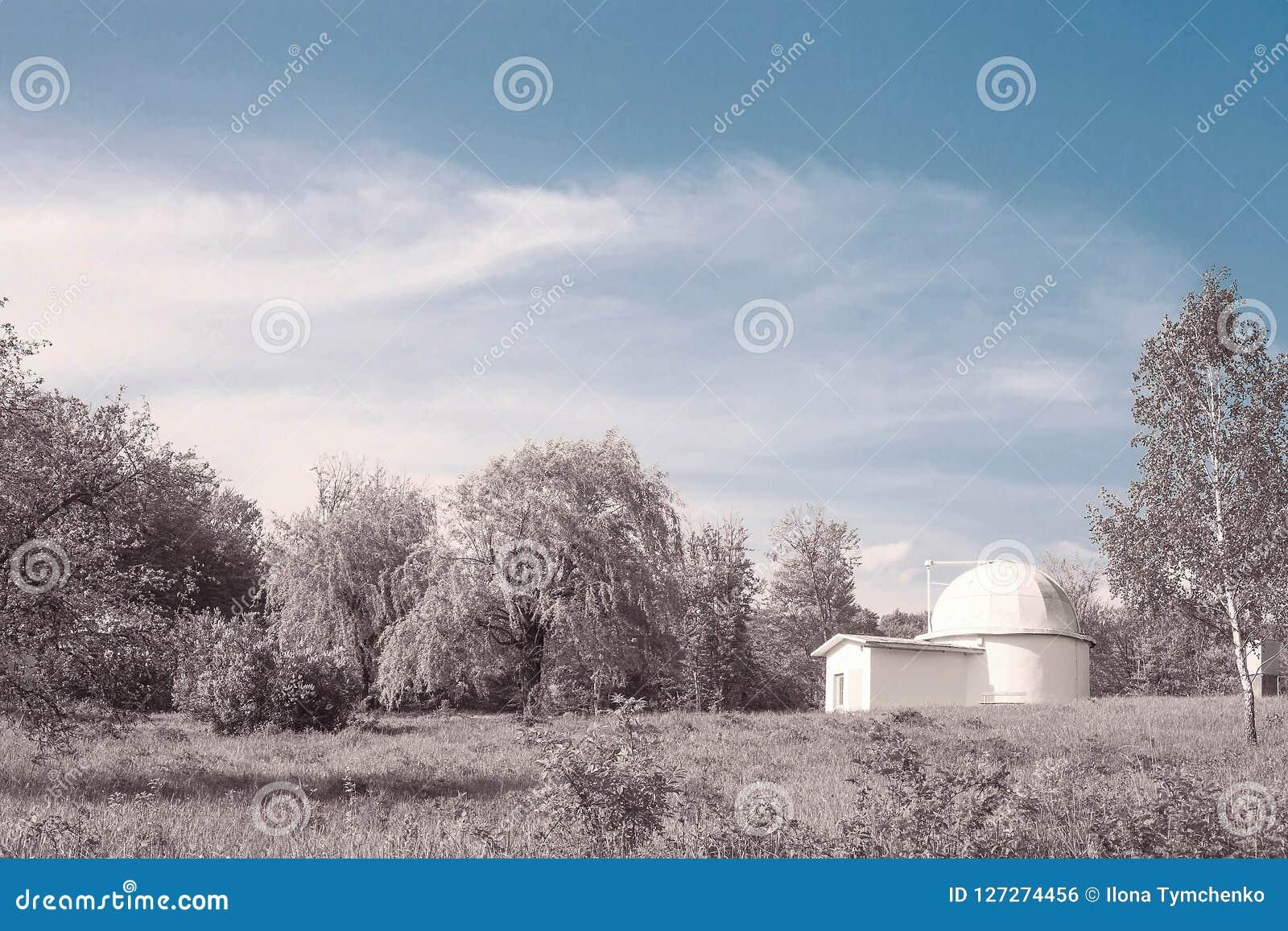 Fantazja krajobraz z domu i menchii drewnami niebieskim niebem