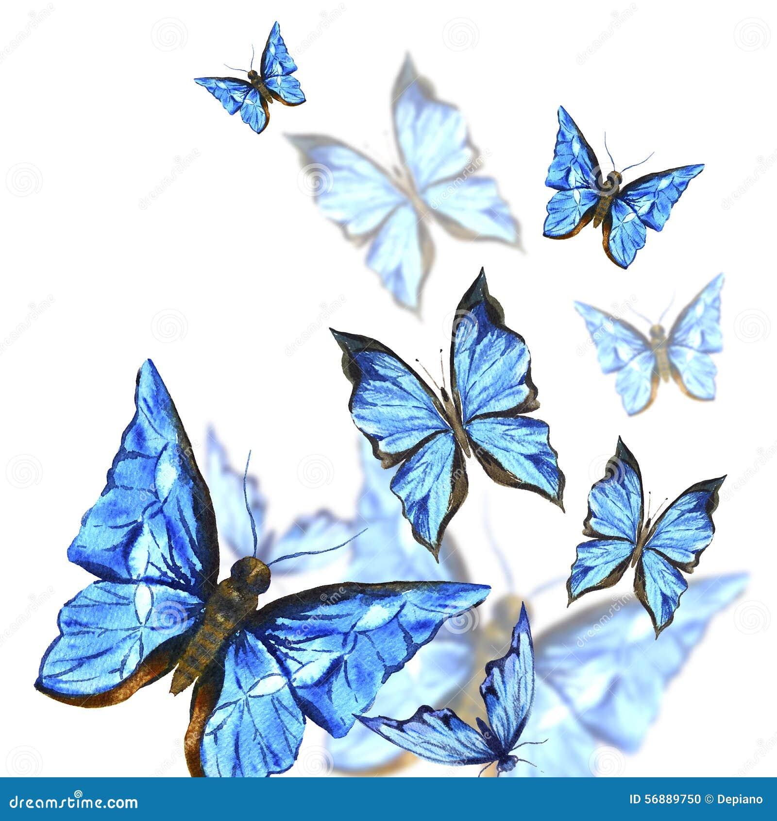 Farfalle dell acquerello su un fondo bianco