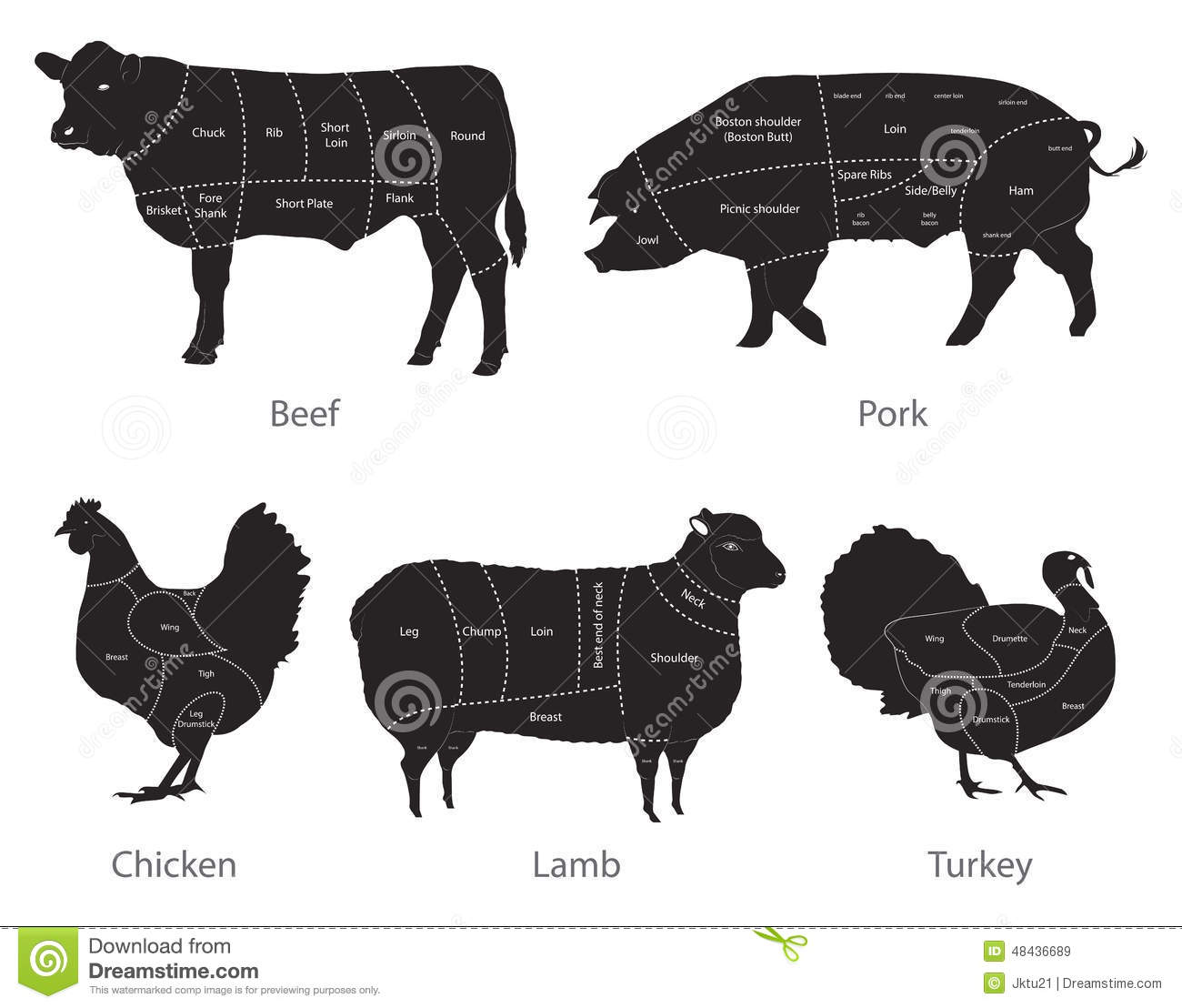 Diagram Of Cow Meat Cuts Beef Guide And Troubleshooting Pig Cut Farm Animal Stock Vector Illustration Sheep 48436689