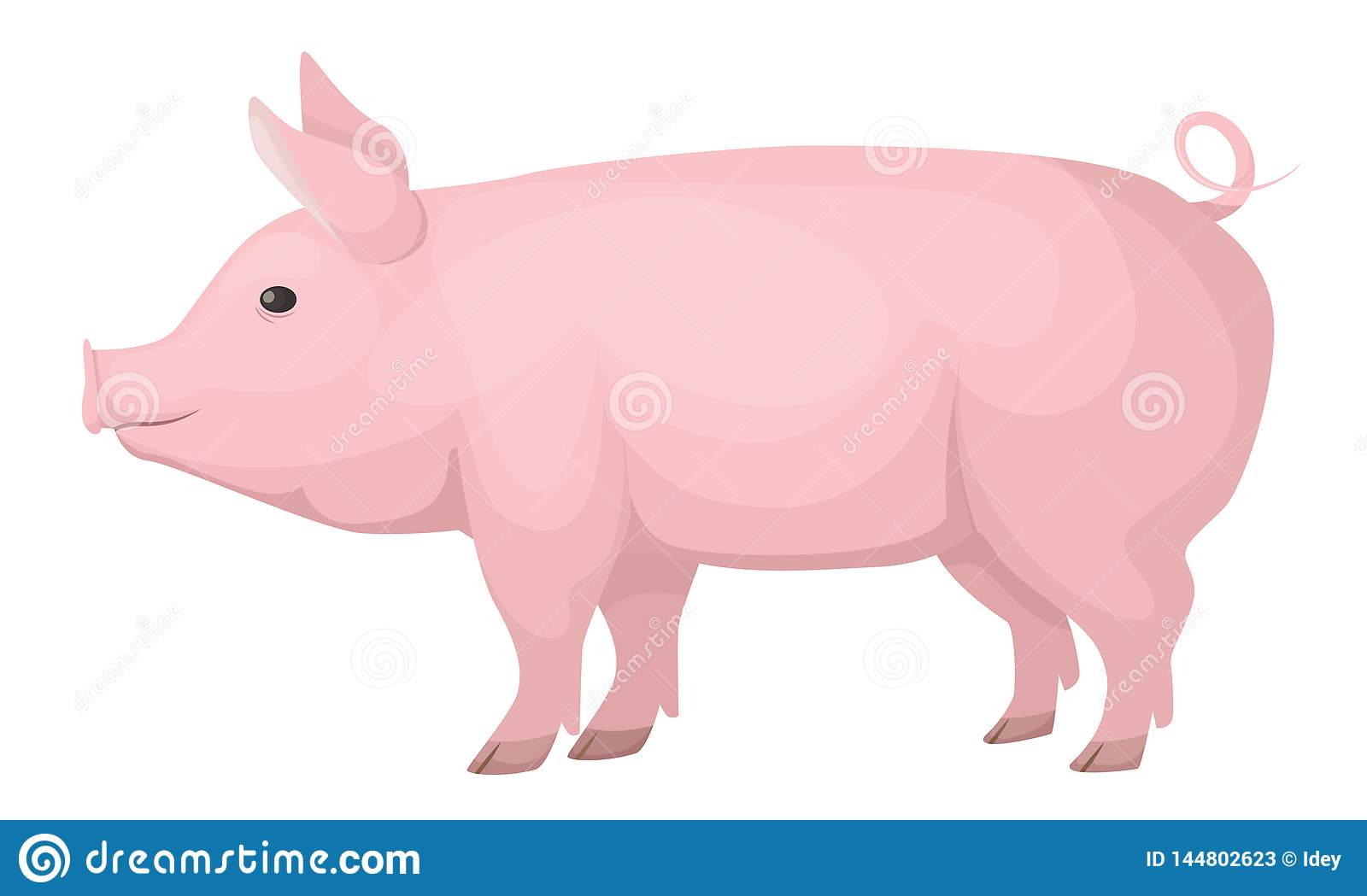 Farm Animals  Cute, Funny, Pink Domestic Pig, Medium Size